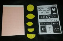 Peach alphas, lemon pieces, black and white chip board banners.